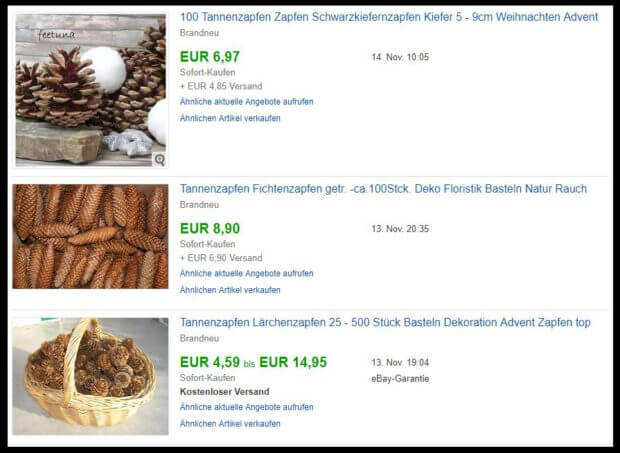 Taschengeld verdienen – Tannenzapfen sammeln und verkaufen